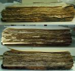 Three successive phases of the supplementation process of the codex ΒΧΦ 24 leaves. From top to bottom: the codex before the supplementation of the leaves, after the supplementation of the leaves with paper and at the end their aesthetic restoration.